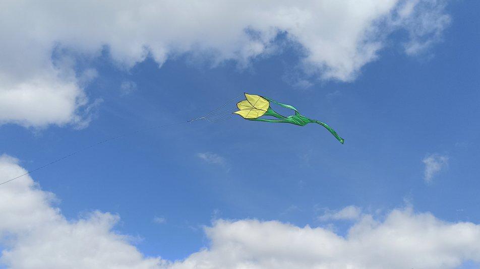 В небо над Николаевщиной запустили семиметровые тюльпаны (ФОТО) 3