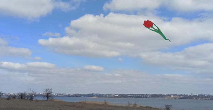 В небо над Николаевщиной запустили семиметровые тюльпаны (ФОТО)