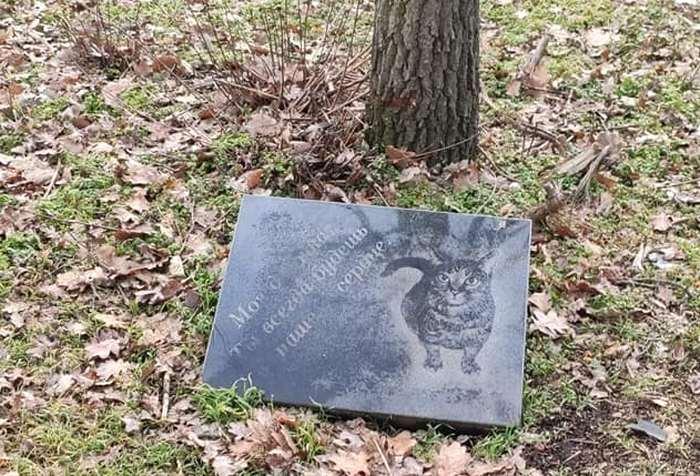 В Николаеве парк превращается в кладбище домашних животных (ФОТО)