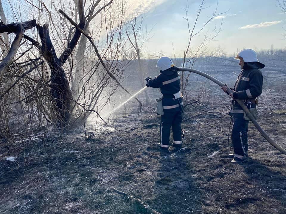 Спасатели Николаевщины потушили 4 га горящего леса (ФОТО) 3