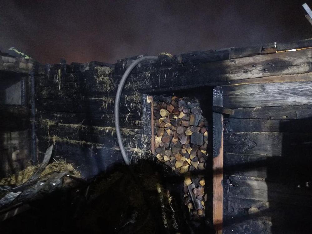 Ночью в Николаеве тушили хозпостройку с дровами (ФОТО) 3