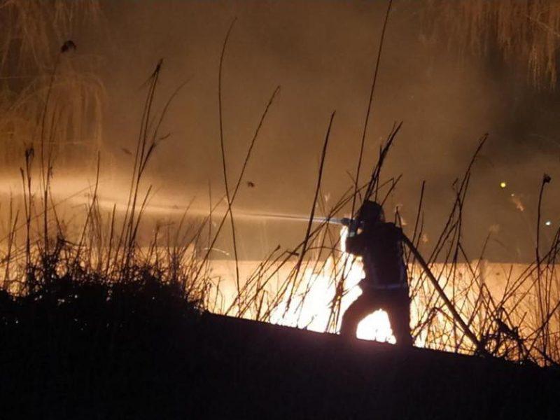 Снова поджог: спасатели тушили камыш в Гурьевке и Корабельном районе Николаева
