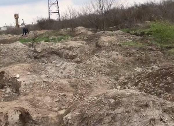 Мэр Николаева намерен обратиться в полицию по поводу «бессовестных кротов», раскапывающих античную памятку на окраине города
