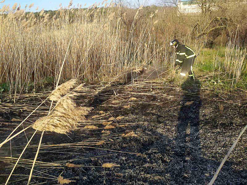 Снова поджог. В Корабельном районе Николаева тушили камыш