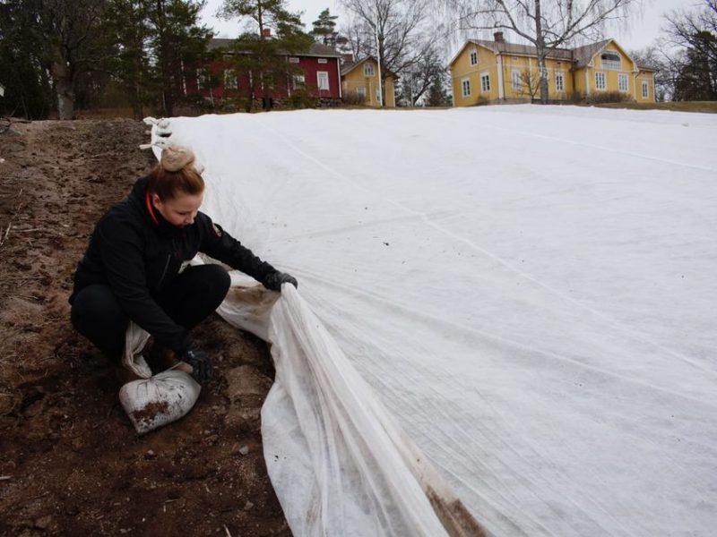 Первые украинские сезонные рабочие уже трудятся в Финляндии. И там говорят, что надо еще