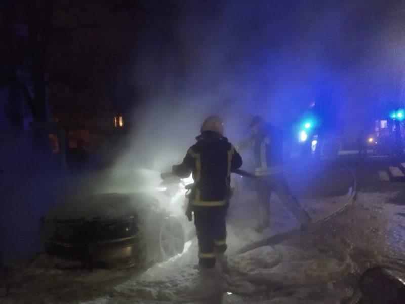 Николаевские спасатели тушили камыши и авто (ФОТО)