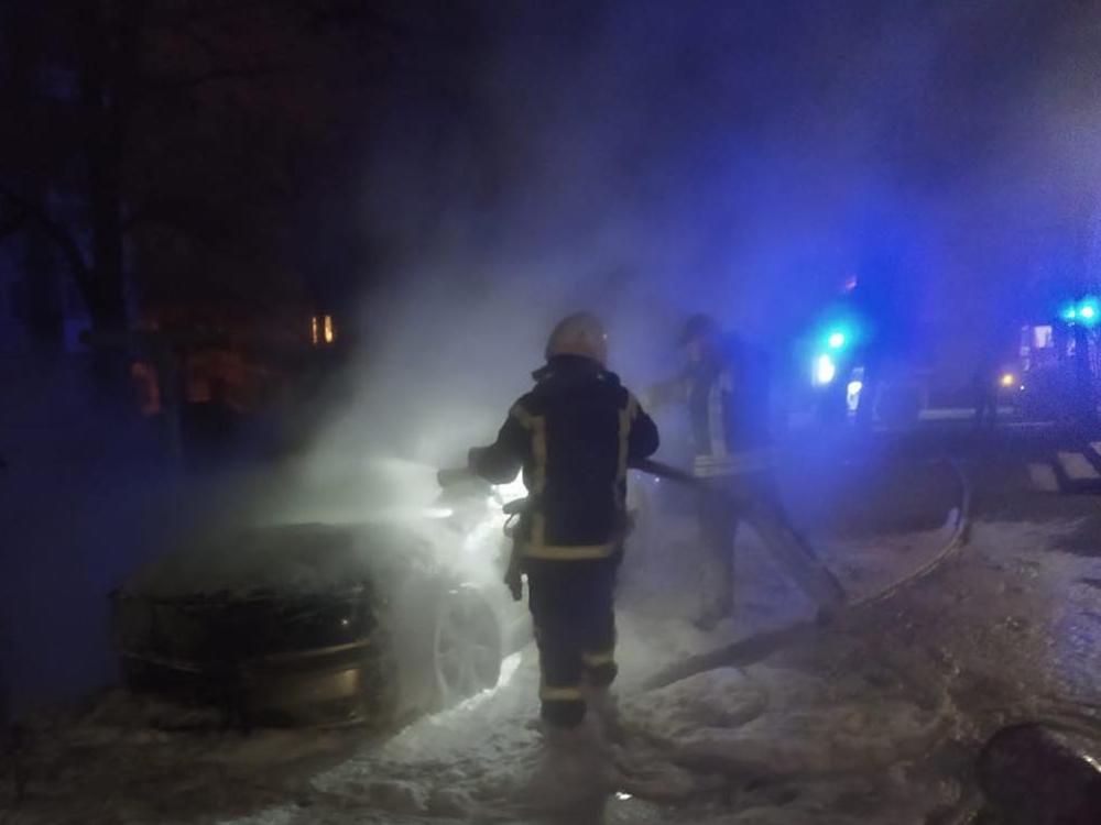 Николаевские спасатели тушили камыши и авто (ФОТО) 1