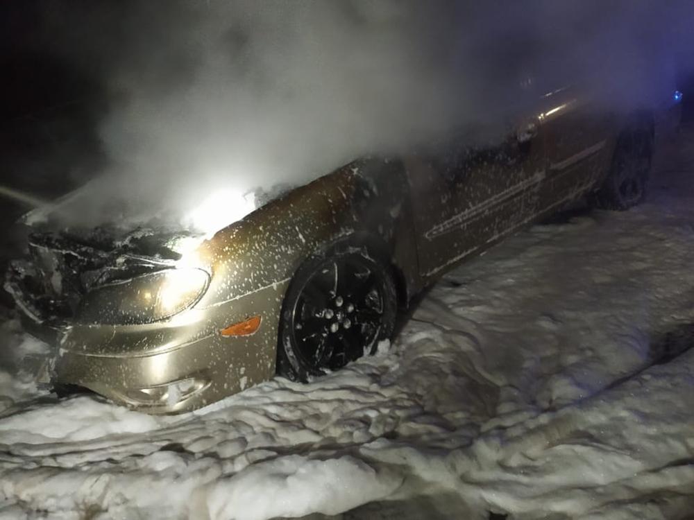 Николаевские спасатели тушили камыши и авто (ФОТО) 3