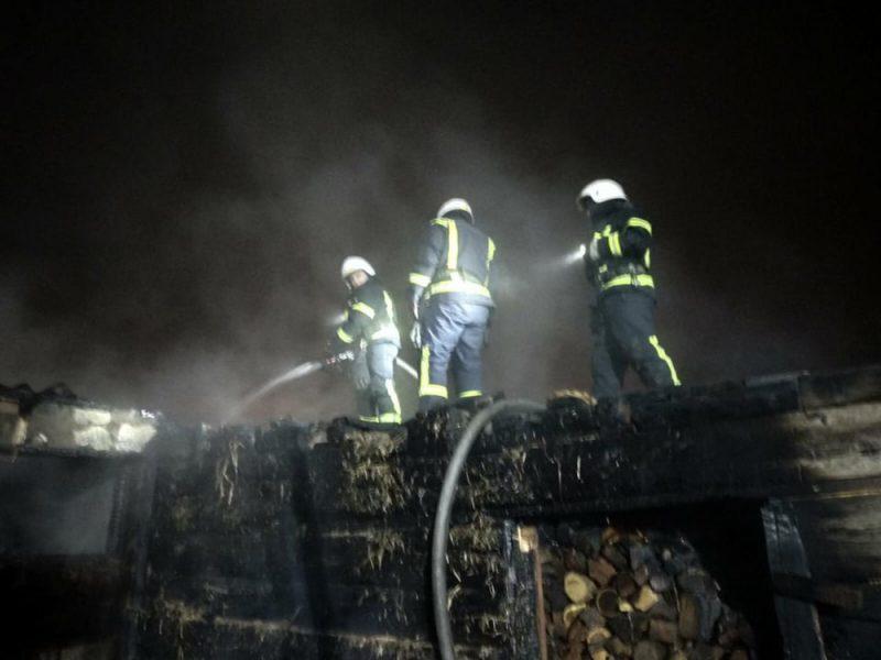 Ночью в Николаеве тушили хозпостройку с дровами (ФОТО)