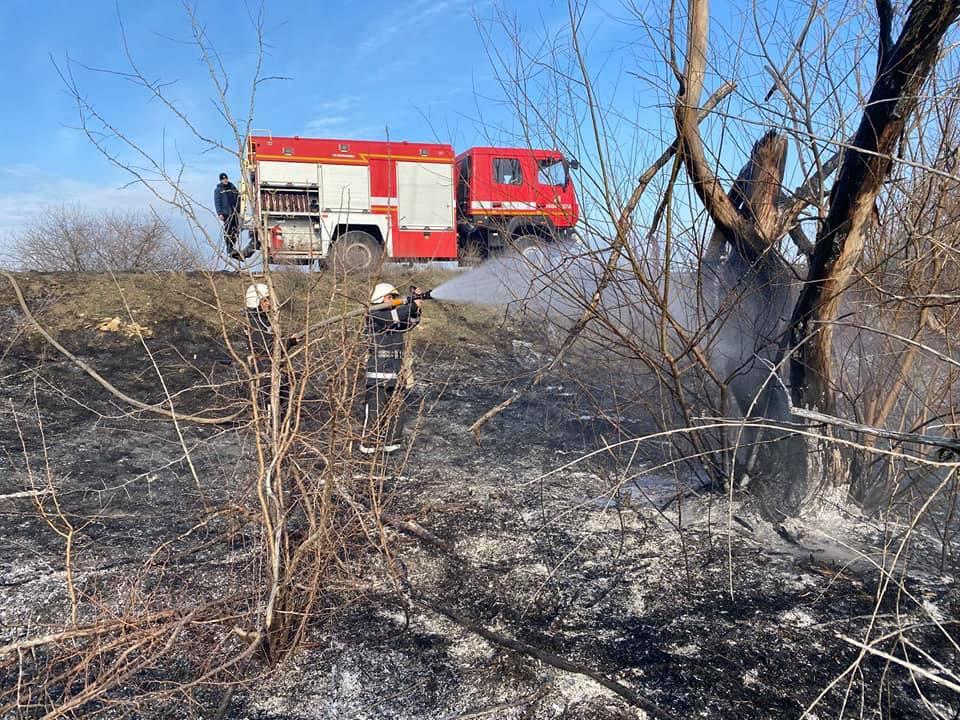 Спасатели Николаевщины потушили 4 га горящего леса (ФОТО) 5