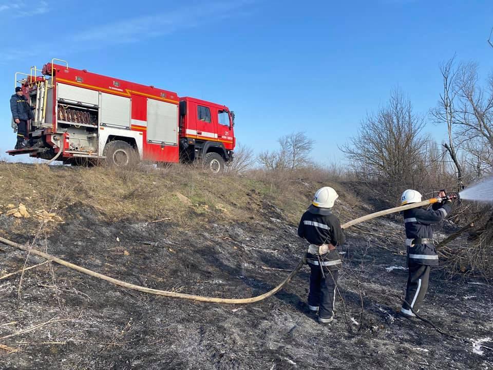 Спасатели Николаевщины потушили 4 га горящего леса (ФОТО) 7