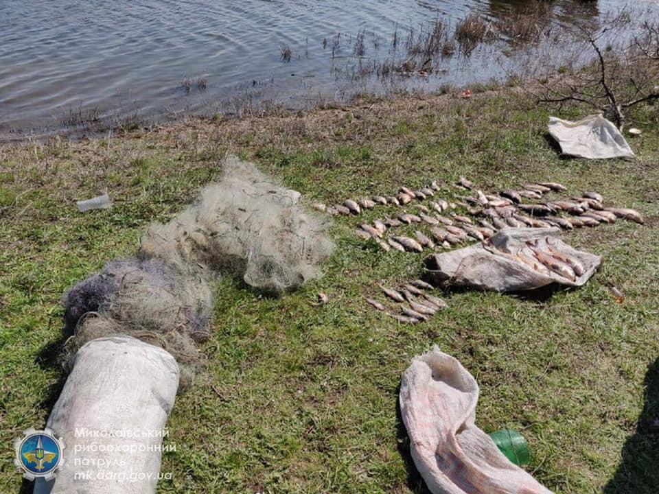 Запрет же! Николаевский рыбоохранный патруль поймал браконьеров, наловивших сетями 32 кг мелочевки (ФОТО) 7