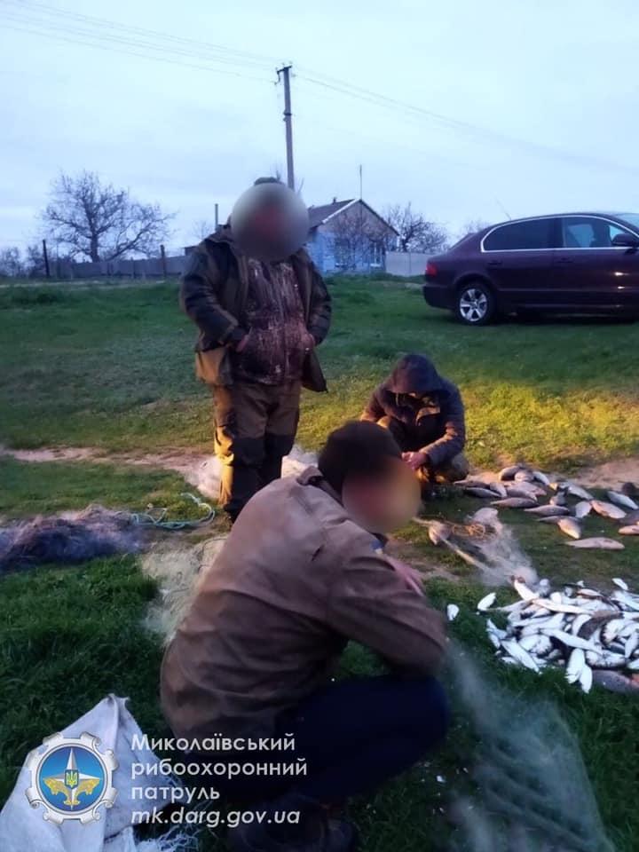 Николаевский рыбоохранный патруль задержал браконьера с 70 кг рыбы (ФОТО) 7