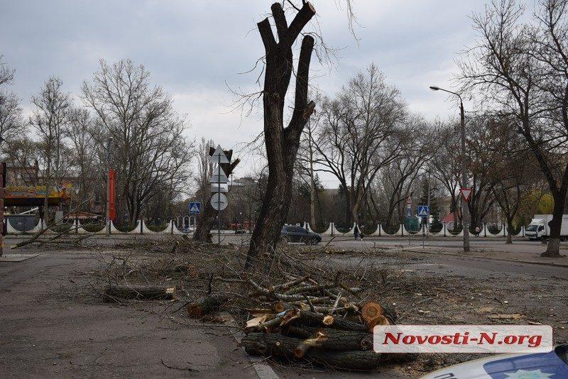 В Николаеве полиция задержала колдуна за незаконную рубку деревьев в центре города (ВИДЕО)