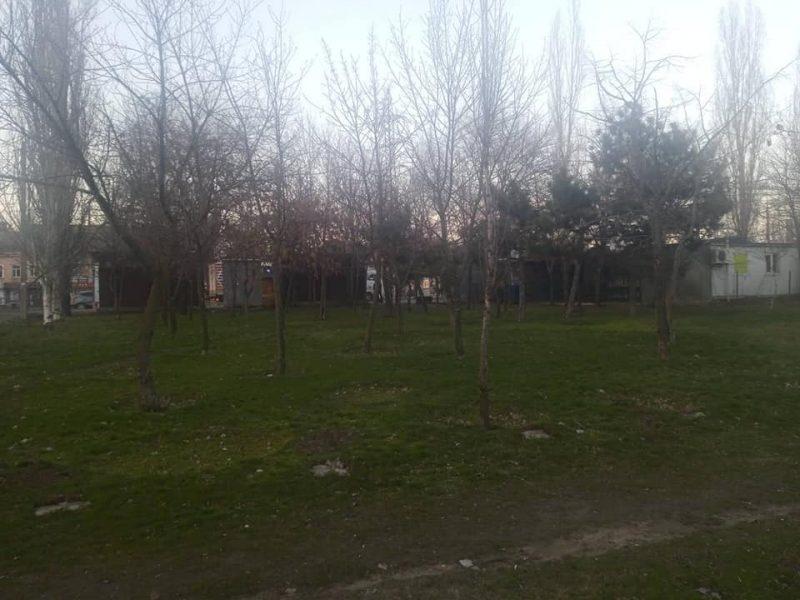 Разрешений нет, но стройка будет? В Николаеве снесут 68 деревьев и на территории сквера таки построят АТБ (ДОКУМЕНТЫ, ВИДЕО)