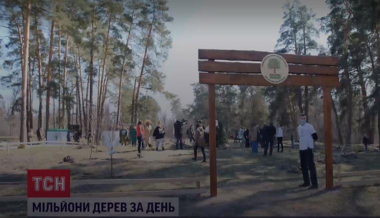 В Украине за 1 день высадили более 4 млн.деревьев и установили мировой рекорд по озеленению (ВИДЕО)