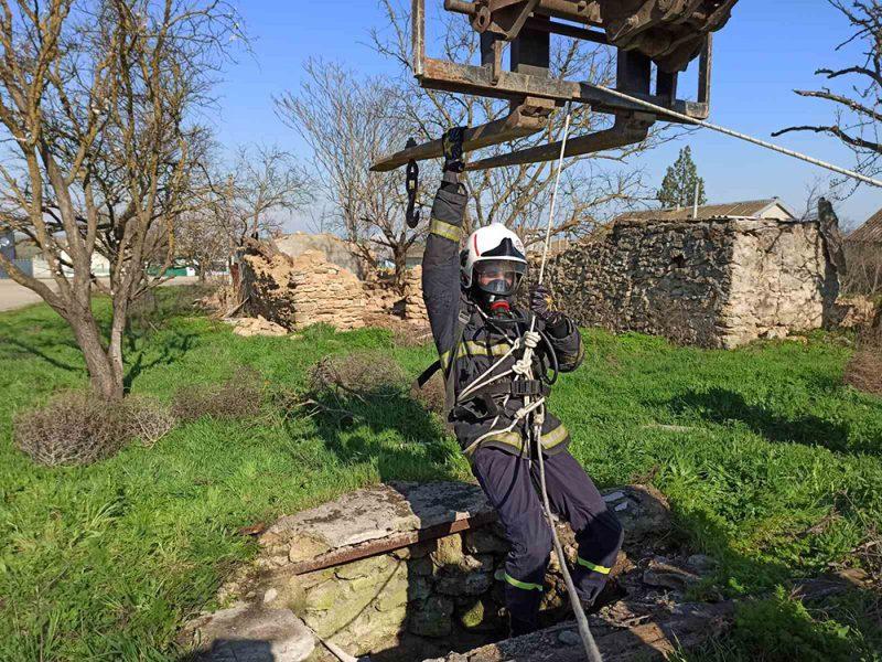 На Николаевщине бык упал в глубокий колодец. Пришлось вызывать спасателей (ФОТО)