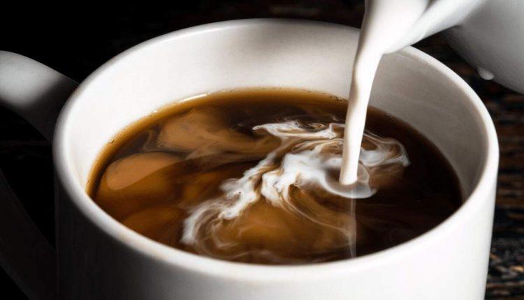Два в одном. Ученые научились делать молоко из грибов и конопли