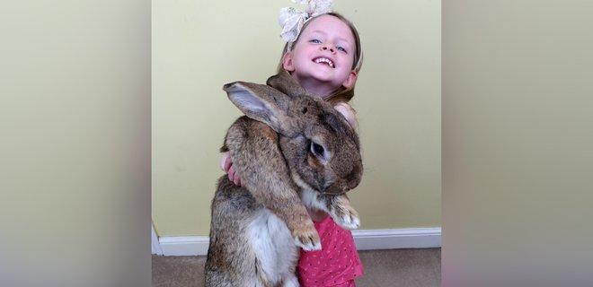 В Великобритании похитили самого большого в мире кролика