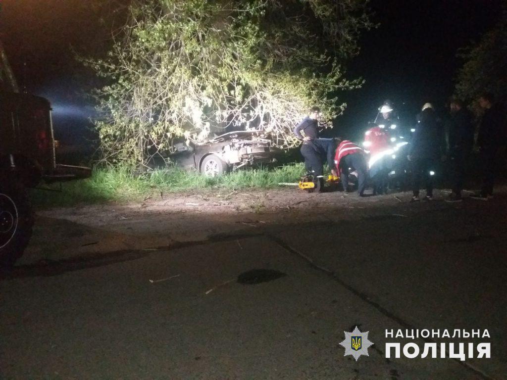 У Врадиевки в дерево влетел Renauit: молодые водитель и пассажир оказались в больнице (ФОТО) 1