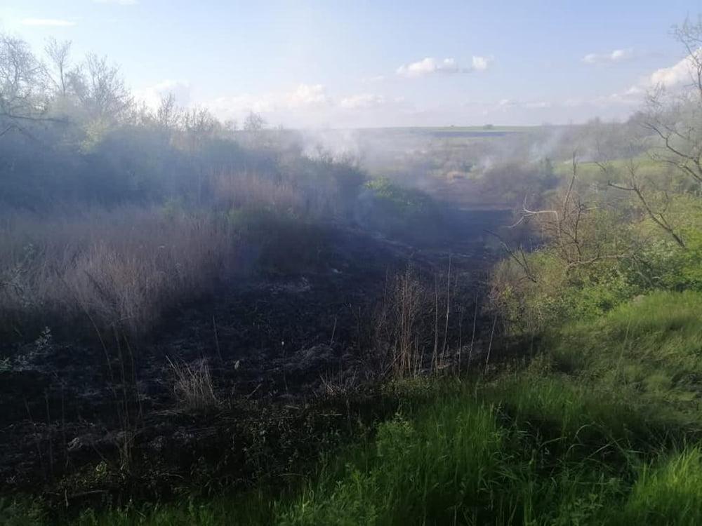 С начала года на Николаевщине выгорело 69 га открытых территорий, за вчерашний день - 5,4 тыс.кв.м (ФОТО) 1