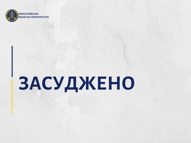 Николаевский апелляционный суд оставил без изменений приговор насильнику 12-летней девочки – 12 лет тюрьмы