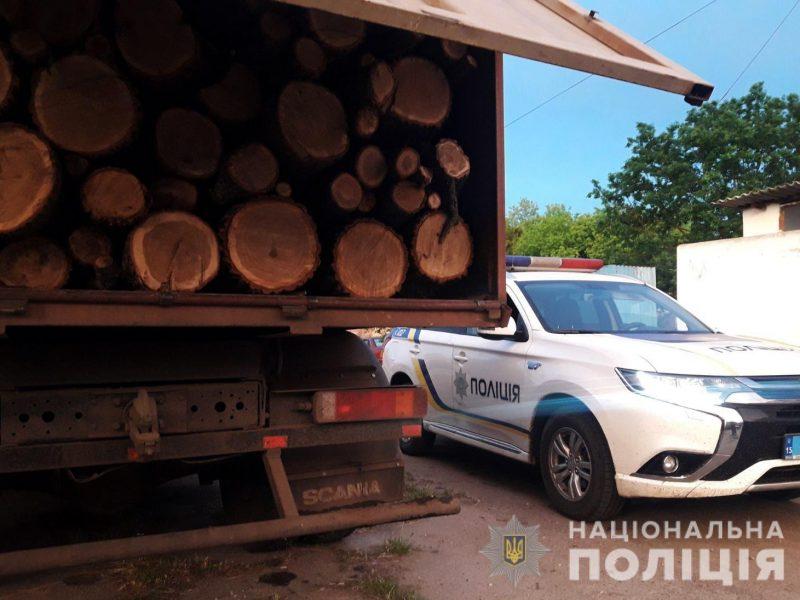 Место то же, а масштабы – больше: в Вознесенском районе задержали ЗИЛ со свежеспиленными дубами (ФОТО)