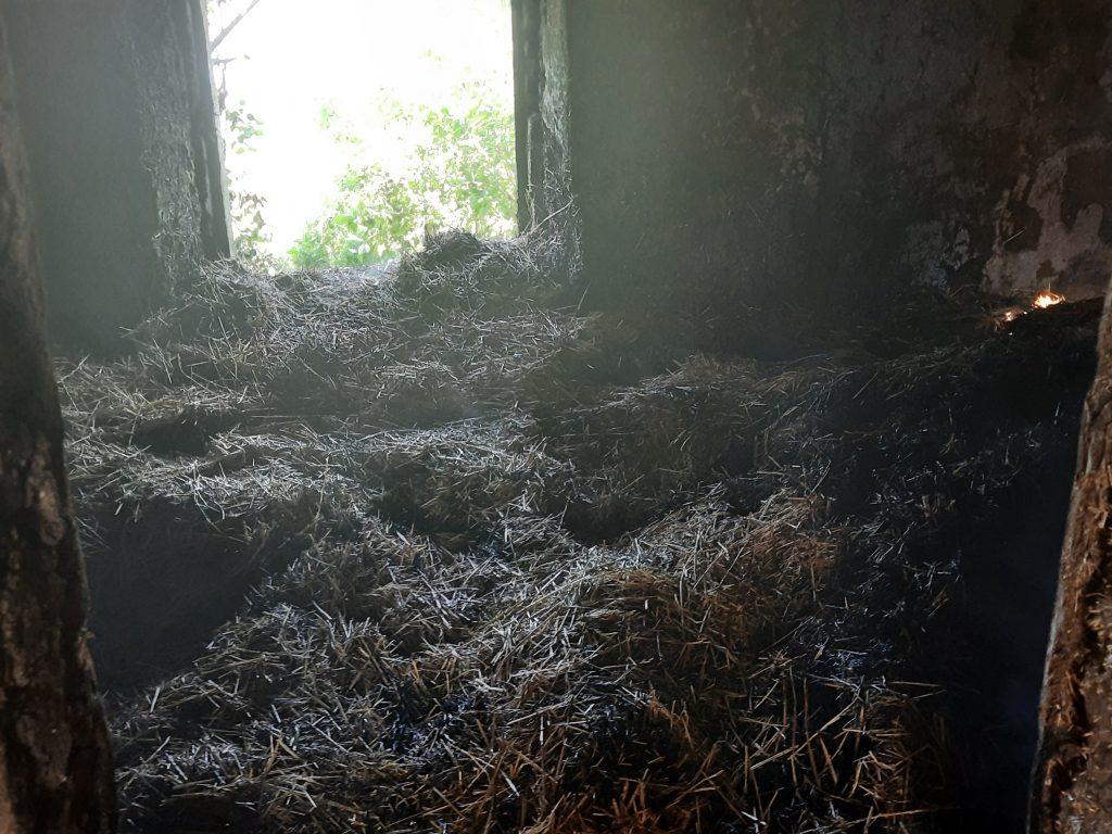 В Баштанском районе сгорело неэксплуатируемое жилое здание с 1,5 тоннами соломы (ФОТО) 1