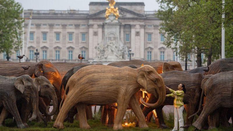 """К Букингемскому дворцу """"пригнали"""" стадо деревянных слонов. Зачем? (ФОТО)"""