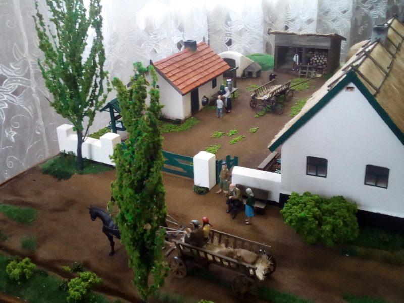 Макет традиционного сельского двора Николаевщины подарили музею «Старофлотские казармы» (ФОТО)