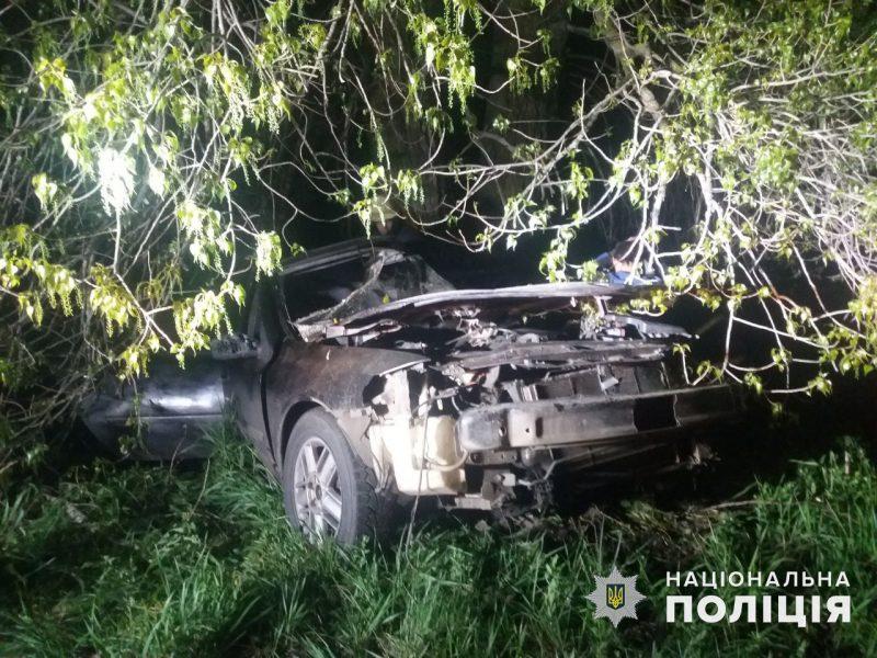 У Врадиевки в дерево влетел Renauit: молодые водитель и пассажир оказались в больнице (ФОТО)