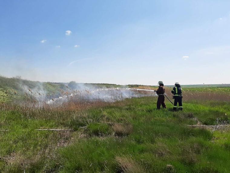 В Николаевской области за сутки спасатели потушили 6 пожаров на открытой территории (ФОТО)