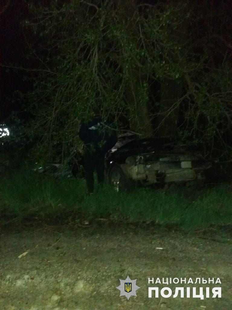 У Врадиевки в дерево влетел Renauit: молодые водитель и пассажир оказались в больнице (ФОТО) 5