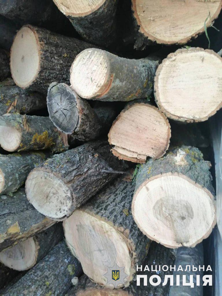 Откуда дровишки? На Николаевщине задержали грузовой микроавтобус с 6,5 кубометрами неизвестно откуда взявшейся древесины (ФОТО) 7