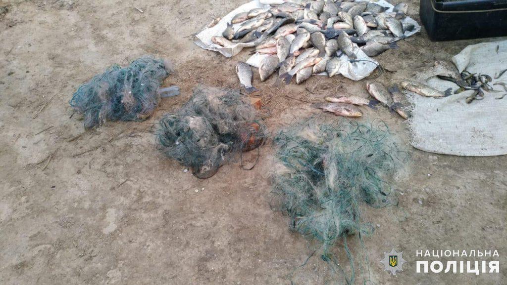 Николаевская водная полиция и рыбоохранный патруль поймали браконьеров на вылове креветки и рыбы (ФОТО) 17