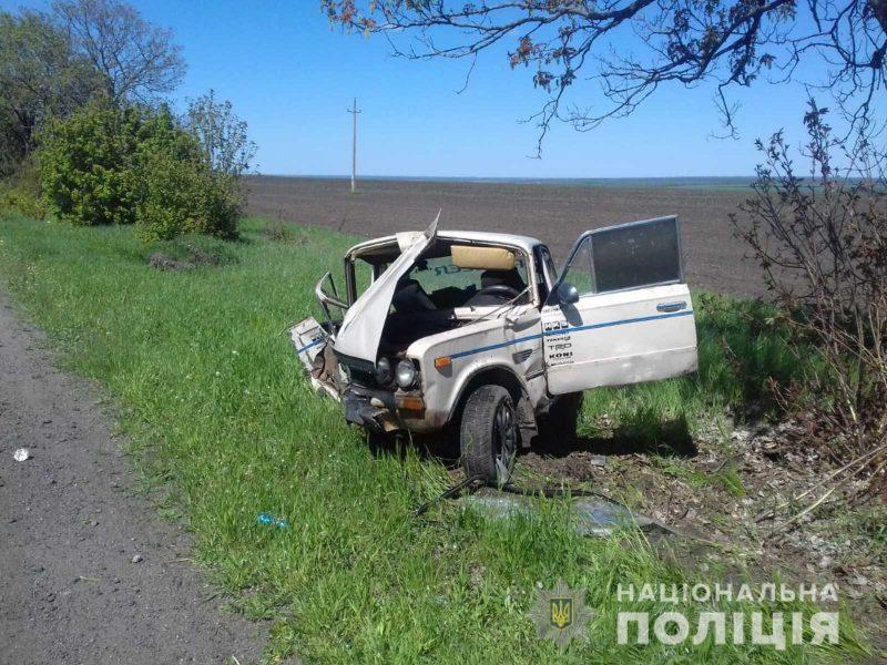 На Николаевщине водитель ВАЗа врезалась в дерево. В машине были 2 девочки (ФОТО)