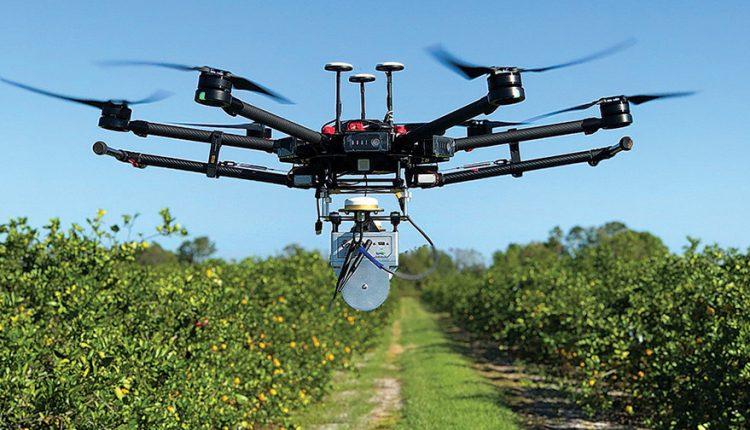 Пчел не хватает. В Украине учатся опылять сады с помощью дронов