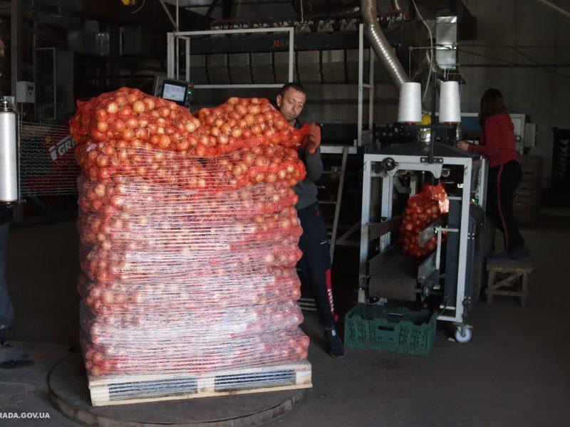 """Николаевскому КПОПу """"Владам"""" продает хорошие овощи, найденные в школьных пищеблоках заплесневелые  – """"человеческий фактор"""""""