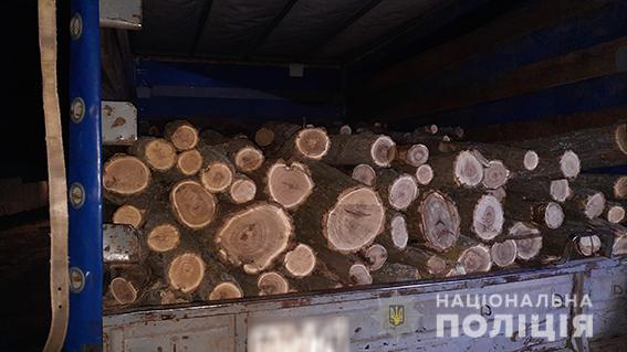 В Вознесенском районе снова задержали машину с незаконно спиленным лесом (ФОТО) 3