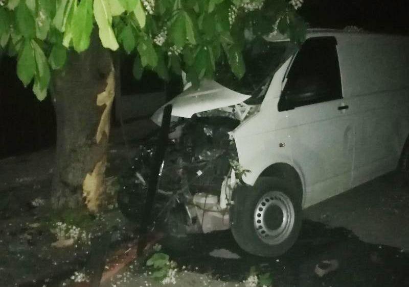 Ночное ДТП в Кривом Озере: водитель микроавтобуса, врезавшегося в дерево, скончался в больнице (ФОТО)
