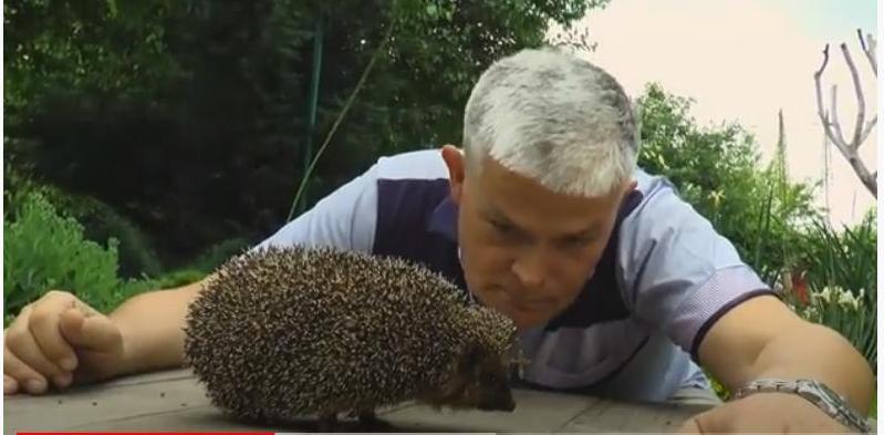 «А для меня милее еж, этот зверь такой хороший»: директор Одесского зоопарка спел новую песню (ВИДЕО)