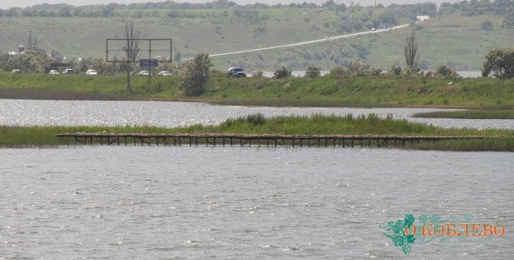 Новые искусственные острова для гнездования птиц в Коблево уже активно заселены (ФОТО)