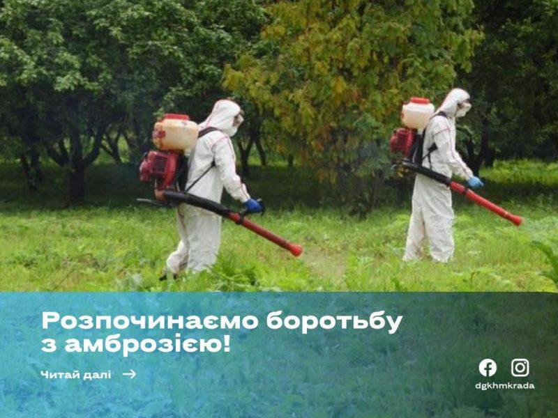 Департамент ЖКХ через Facebook собирает адреса, где в Николаеве надо «потравить» амброзию