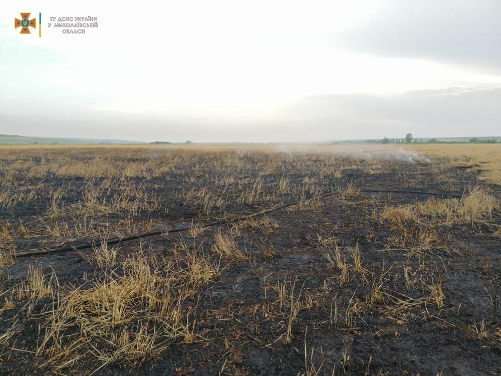 На Николаевщине выгорело 7 га зерновых – спасатели подозревают поджог (ФОТО) 3