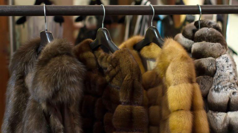 Израиль первым в мире ввел запрет на продажу меха