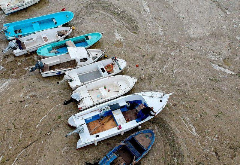 """Мраморное море покрыли """"морские сопли"""". Эрдоган предупреждает об опасности для Черного моря (ФОТО, ВИДЕО)"""