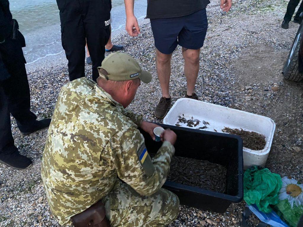 Выловили мальков камбалы и 4 кг креветки: в Рыбаковке пограничники выявили двух браконьеров (ФОТО) 3