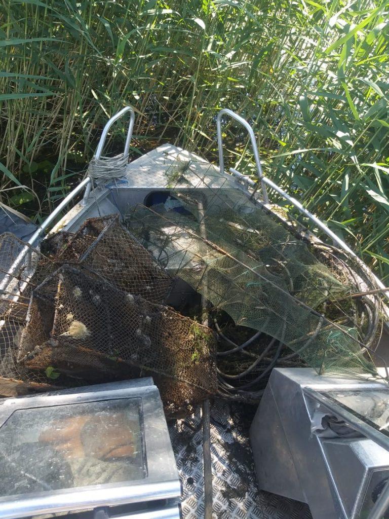 За неделю Николаевский рыбоохранный патруль выпустил на волю из браконьерских сетей 30 кг рыбы и раков (ФОТО) 3