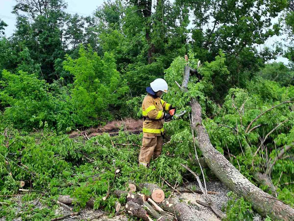 Непогода пошалила в Первомайске и Кривом Озере. Помогали спасатели (ФОТО) 1