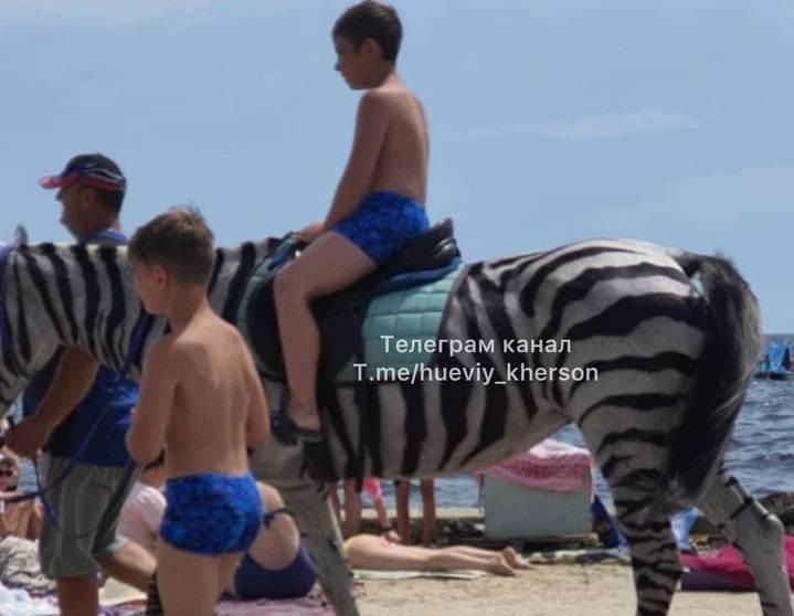 В Скадовске лошадь перекрасили в зебру ради заработка на пляже – одни катались, другие возмущались (ФОТО)